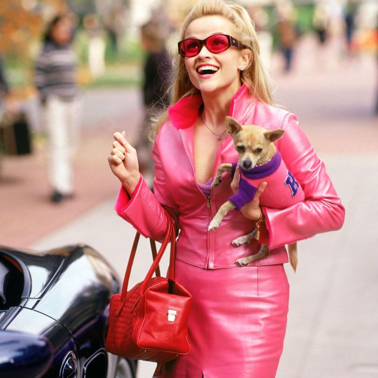 Top 6 Rom Coms to Watch With Your Pooch